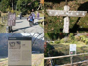 平泉トレイル4.jpg